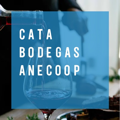 CATA BODEGAS ANECOOP VALENCIA CUILINARY FESTIVAL